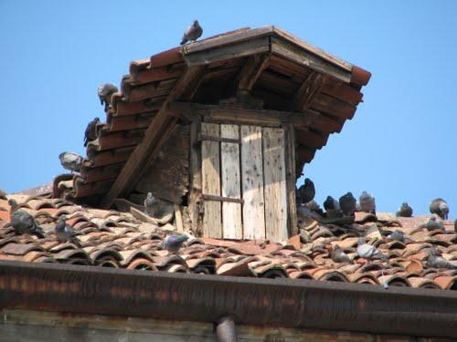 Brevi storie degli elementi architettonici sottovalutati – (1) L'abbaino