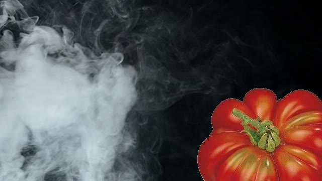 pomodori e fumo
